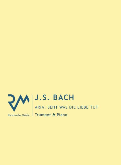Bach - Seht was die Liebe cover